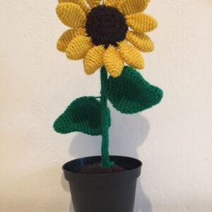 Sunflower amigurumi